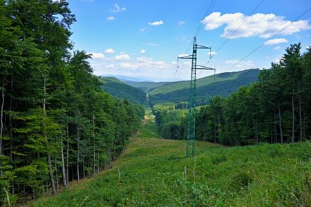 torres el�ctricas: torres de alta tensi�n en el medio del bosque