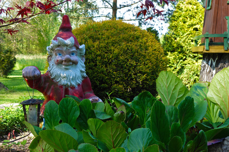 rockery: red garden gnome with lantern in the garden rockery