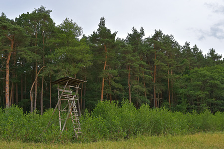 hunters tower: shelter with a ladder for hunting