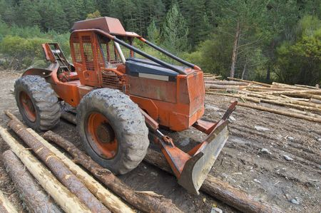 buldozer and cutted trunks in a forest Stock Photo - 5909806