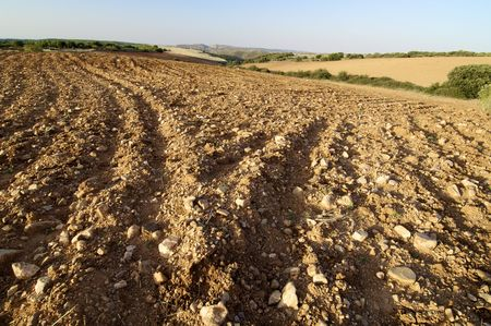 tilth field waiting to be cultivated, Saragossa, Spain Stock Photo - 5930848
