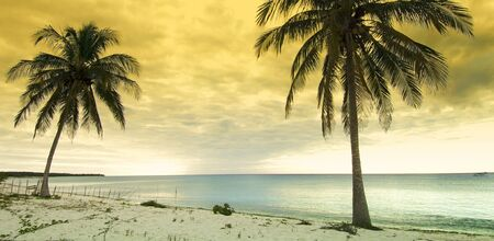 sunset at the beach tropical Maria la Gorda; Guanahacabibes Peninsula in Cuba photo