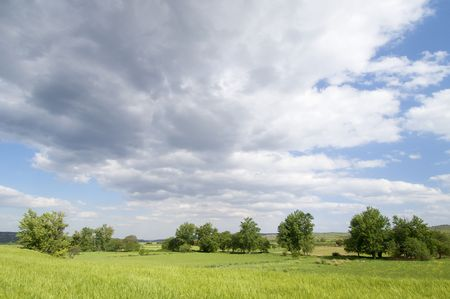 green meadow with trees and clouds in Trasmoz; Spain photo