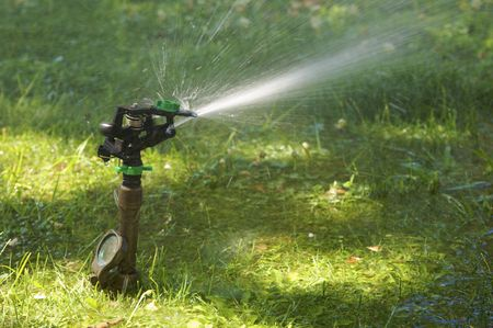 rotational: lawn sprinkler watering a garden