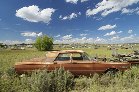corroding: abandoned cars in a meadow