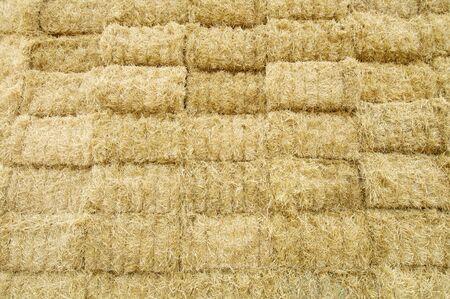 bale: beauty background of straw bales Stock Photo