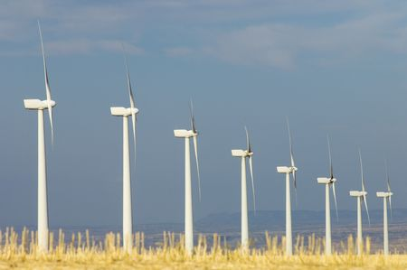 Group of aligned windmills with yellow field photo