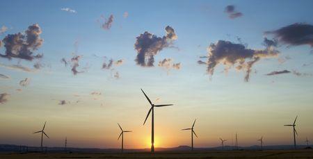 windfarm: horizonte de instalaciones al atardecer en Espa�a