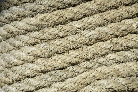 coiled rope: perfectly coiled rope around a pole