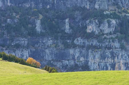 anisclo: Autumn colors in Anisclo valley.; Ordesa National Park; Spain