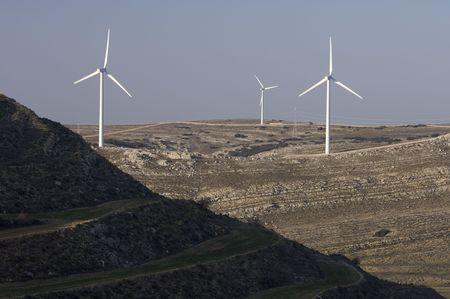 windfarm: windfarm fied with blue sky