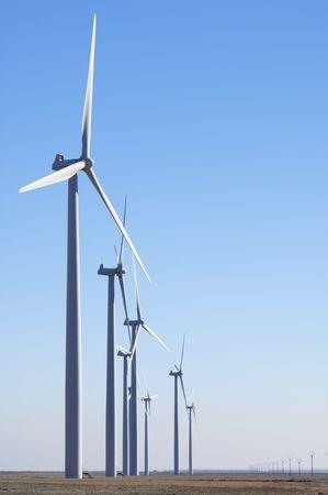 windfarm: windfarm fied with clear sky