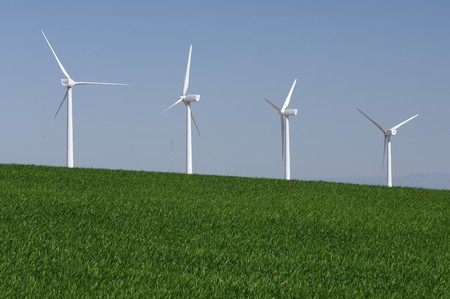 four windmills in a field with blue and clear sky Stock Photo - 6919352