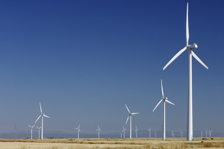 windfarm: windfarm fied with blue and clear sky