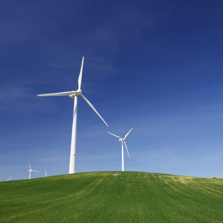 generators: group of windmills in an idyllic meadow