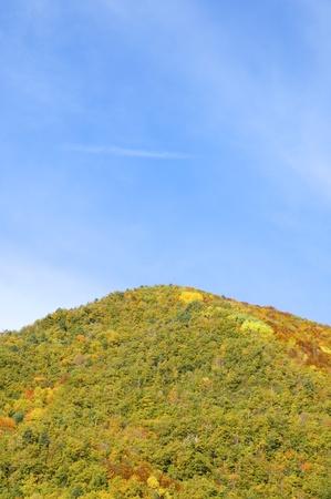 hill in Vio valley, Huesca, Aragon, Pyrenees, Spain
