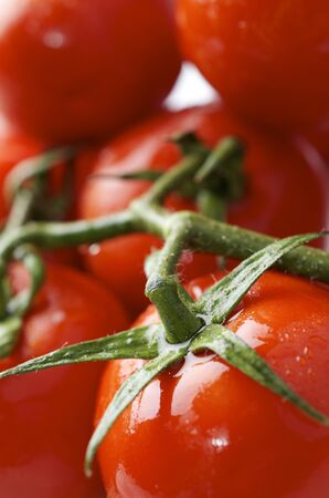 forefront: forefront of a group of red tomatoes