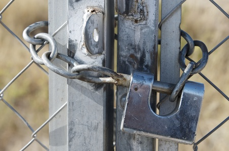 padlock  and chain on a metal fence photo