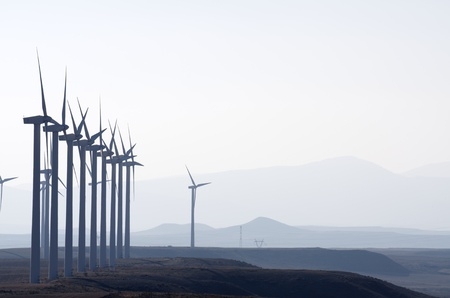 aligned: aligned windmills for renowable electric production with white sky
