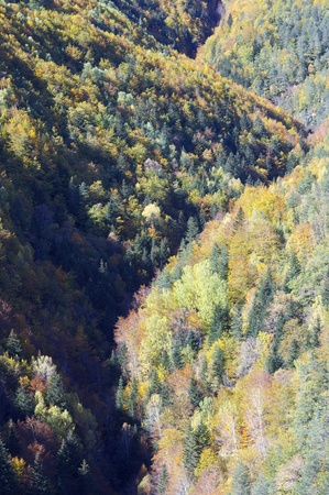 autumnal hills in the valley of Vio, Huesca, Pyrenees, Spain photo