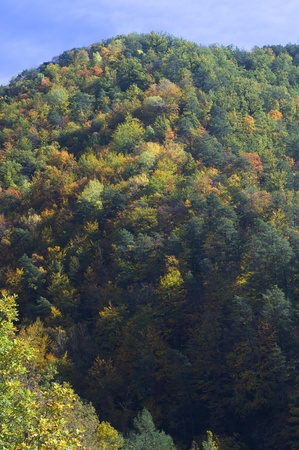 autumnal hills in the valley of Vio, Huesca, Pyrenees, Spain Banco de Imagens