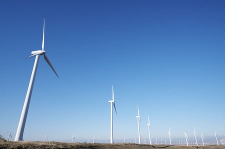 aligned windmills for renowable electric production with clear sky photo