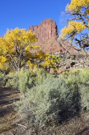 indian creek: hill called Jack Bridger at dawn in Indian Creek, near Canyonlands, Utah, USA Stock Photo