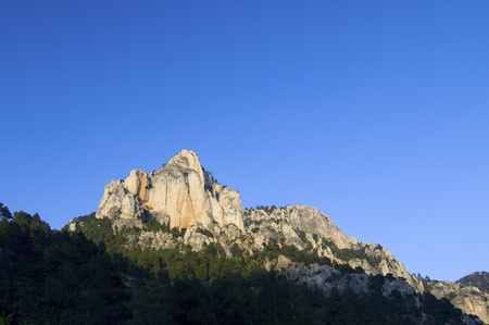 pinnacle: rocky pinnacle in a pine forest on a clear day, Beceite, Teruel, Spain