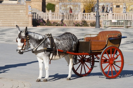 horse drawn carriage: donkey and  tourist coach for children in Seville, Andalucia, Spain