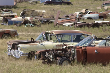 abandoned cars in a meadow