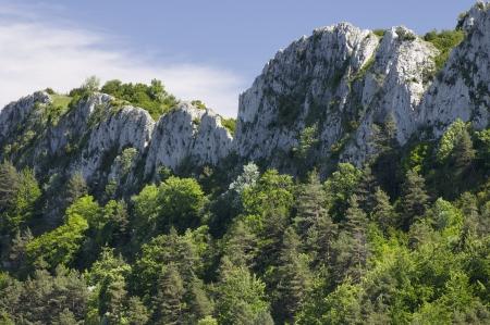 santo domingo: view of the forested mountains of Santo Domingo, Saragossa, Aragon, Spain