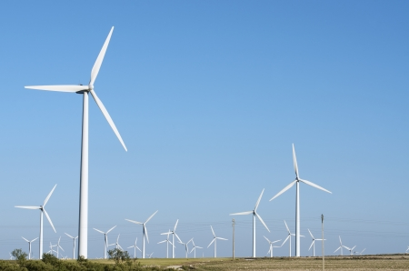 generators: group of windmills for renewable electric energy production