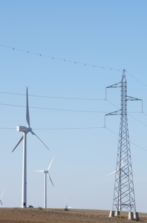 aligned windmills for renowable electric production and power line photo