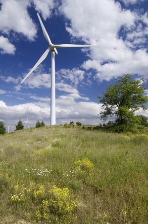 aras: group of windmills for renewable electric energy production, Aras, Navarre, Spain