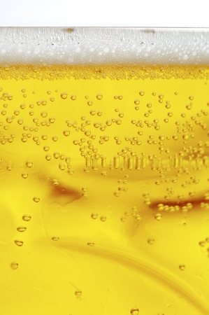close-up view of a frothy and bubbly beer photo