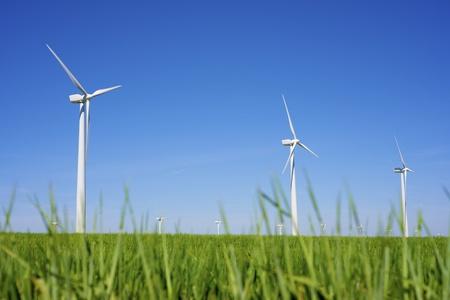 windmills for  electric power production, Pozuelo de Aragon, Zaragoza, Aragon, Spain photo