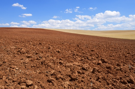 tillage: view of a plowed field in the province of Segovia, Castile-Leon, Spain