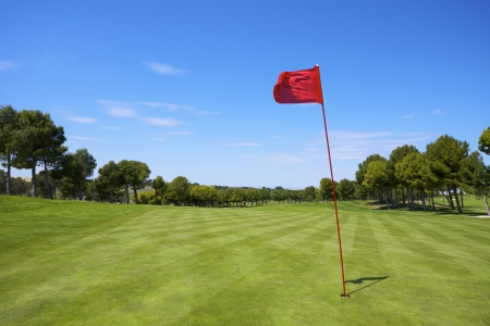 view of a golf course with a red pennant
