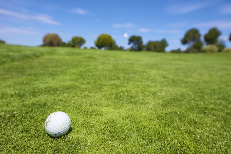 closeup of a golf ball on a green field photo