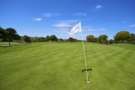 golfcourse: view of a golf course with a white pennant