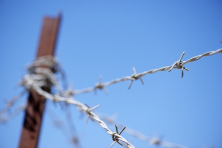 wire: foreground of a barbed wire fence