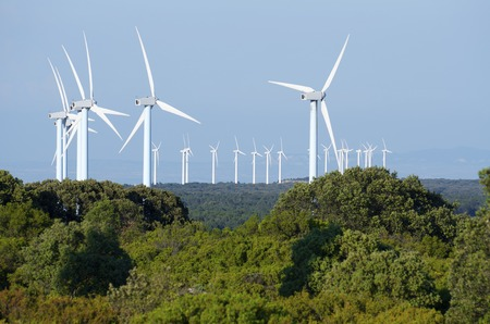 aligned: Windmills for renewable electric energy production