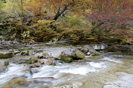 Arazas river in Ordesa National Park, Pyrenees, Huesca, Aragon, Spain photo