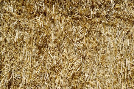 straw bales stacked photo