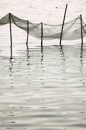 chinese fishing nets: view of poles for fishing nets on standing water in La Albufera, Valencia, Spain