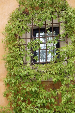 gated: Gated window in Cuenca, Castilla La Mancha, Spain. Editorial
