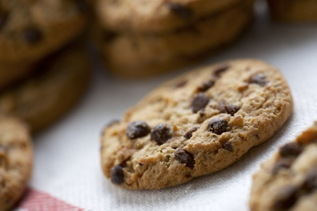 Group of chocolate chips cookies. photo