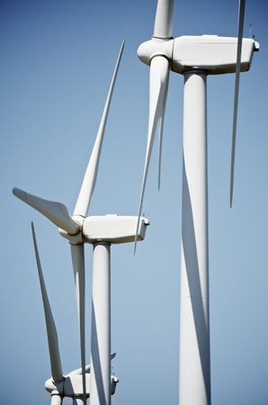 aligned group of windmills for renewable electric energy production, Navarre, Spain photo