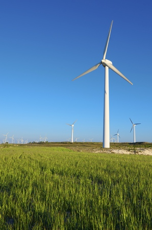 windturbines: windmills for  electric power production, Zaragoza Province, Aragon, Spain.