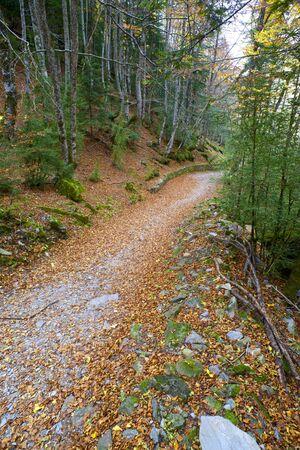 ordesa: Hiking trail in Ordesa National Park, Pyrenees, Huesca, Aragon, Spain.